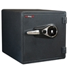 FireKing KY1313-1GRFL Fingerprint Fire Proof Business Safe, 4 Locking Bolts