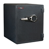 FireKing KY1915-1GREL Electronic Fire Proof Business Safe, 6 Locking Bolts