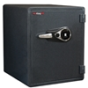 FireKing KY1915-1GRFL Fingerprint Fire Proof Business Safe, 6 Locking Bolts